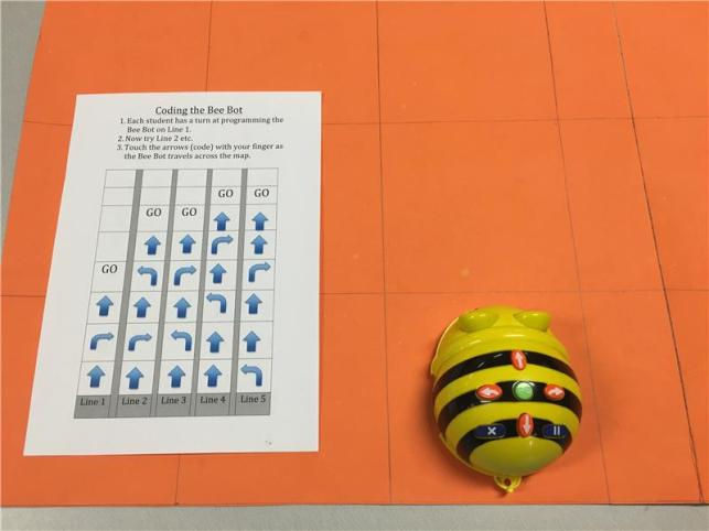Coding the Bee-Bot